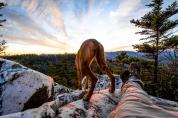 Shining Rock Sunset