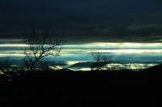 Pre-sunrise Foggy Morning